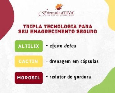 Lipodetox (Composto - 30 doses)